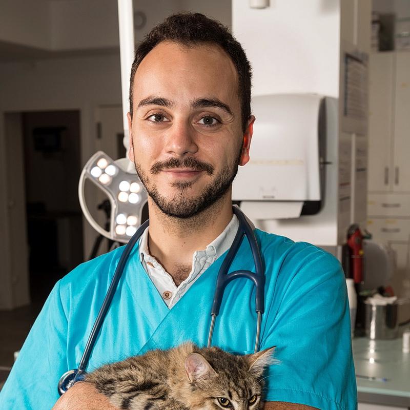 Dr Ruiz